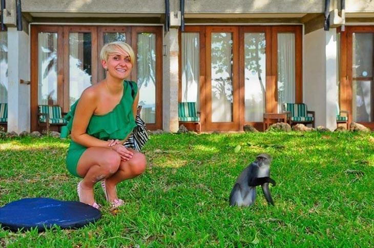 dr lifestyle imałpa. Dwie małpy?