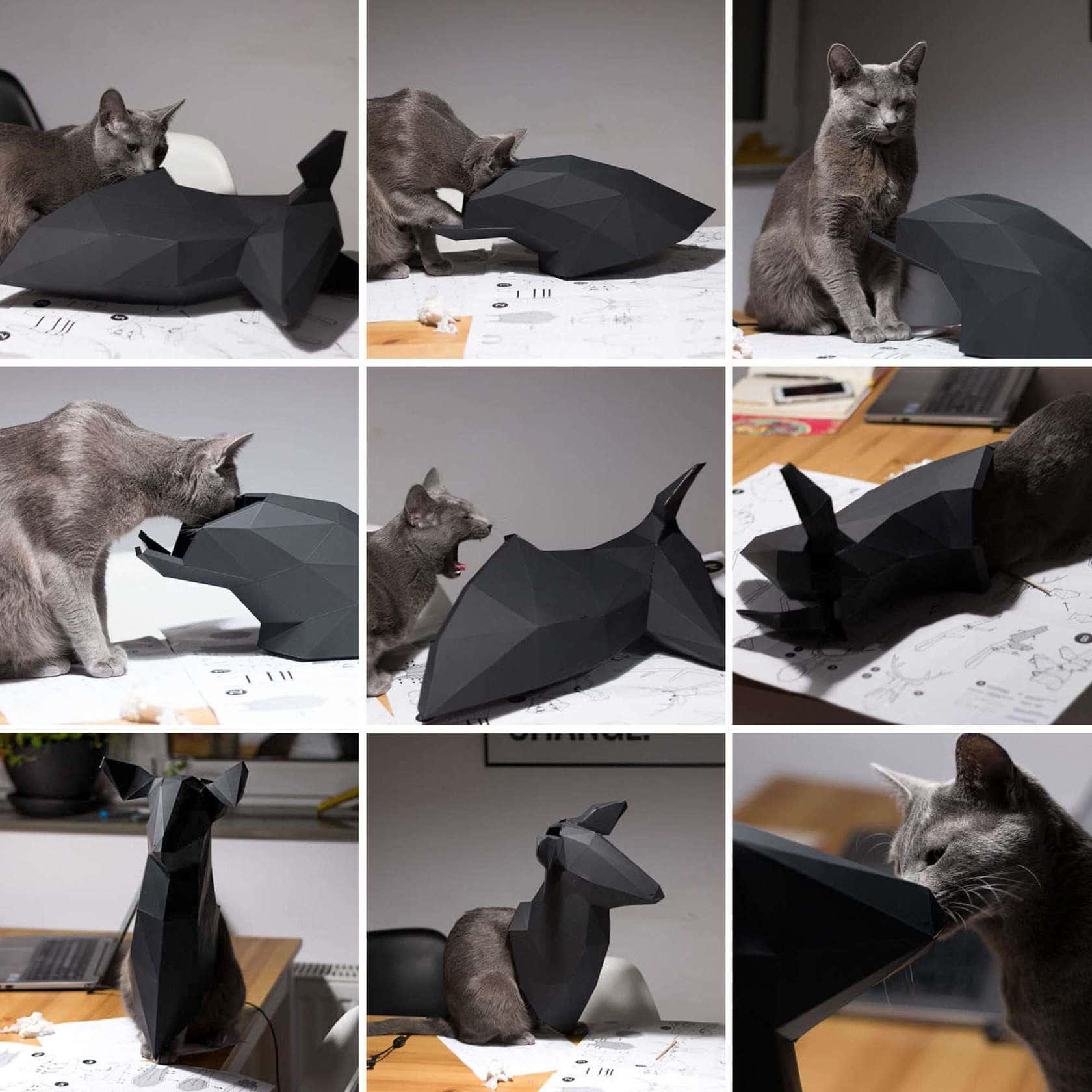 kot przeszkadzający wwykonaniu jelenia zorigami
