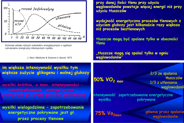 slajdy zwykładów prof.Anny Jegier
