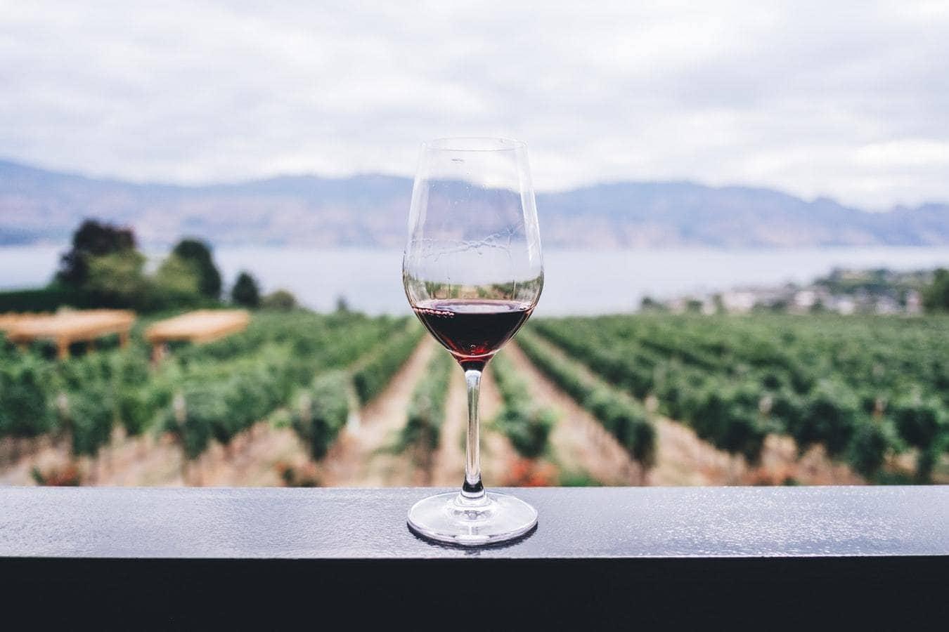 lampka wina a zdrowie