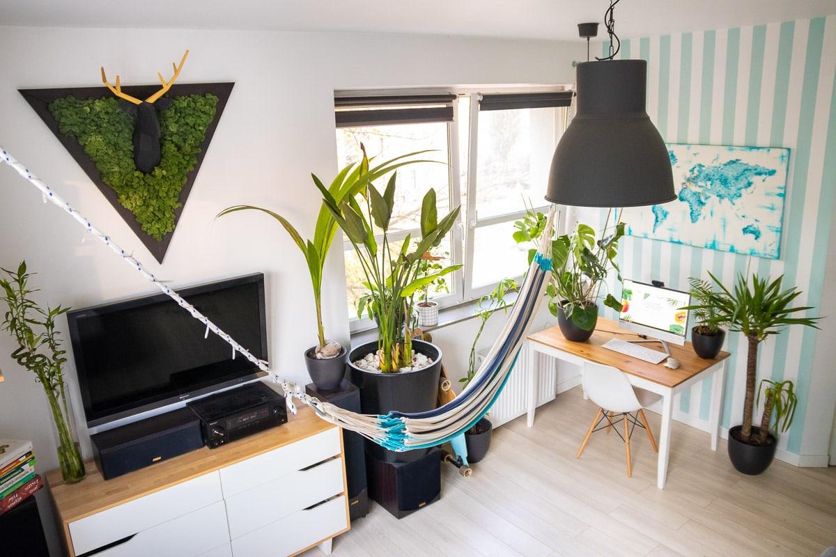 mieszkanie drlifestyle obraz zmchu